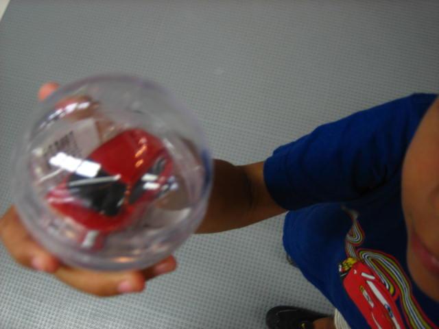 suzuki 10.JPG
