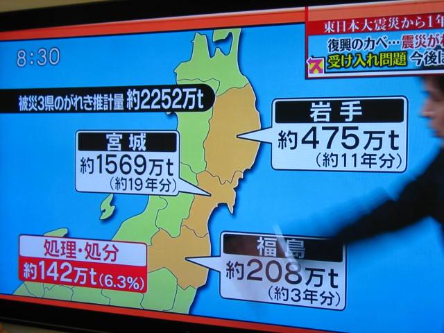 shinsai 4.JPG