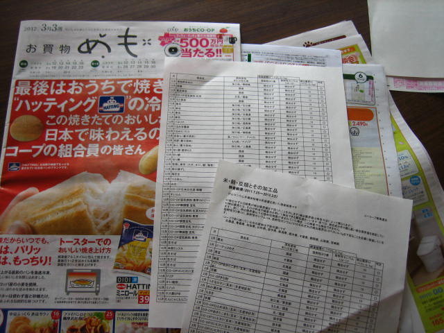 shinsai 5.JPG