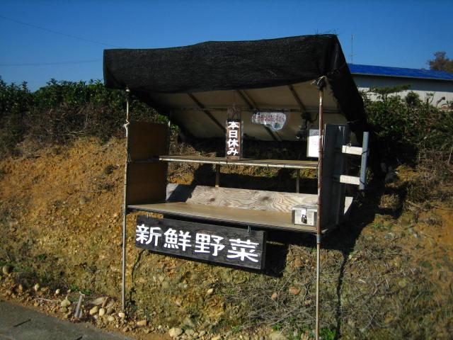 yasai 9.JPG